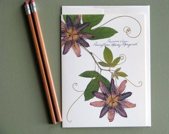 Purple Passion vine flowers, pressed flower card, wild vines, nature greeting card, no.1148