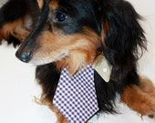 Dog collar shirt and tie- gingham dog tie