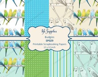 Budgie Digital Papers - budgerigar parakeet pet bird, 8 Printable Scrapbooking Papers, 12x12 inch - Digital Instant Download SP029