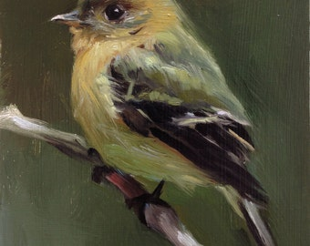 Tufted Flycatcher - Open Edition Print of Original oil painting