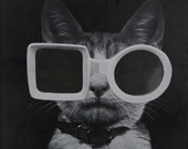 Cat Art, Paper Collage, Mr. Cool, Black and White Cat with Sunglasses Art, frighten, Collage on Paper