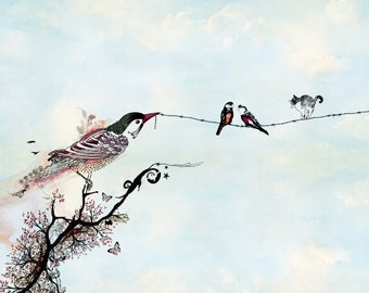 Birds on a wire, Love birds art, Drawing & Illustration, Bird illustration, Ink drawing, 11x14 print