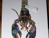 11x14 Lobster Watercolor Print