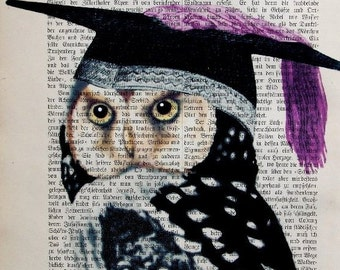 BACHELOR  GRADUATION OWL Art Dictionary  mixed media illustration poster art print wall decor