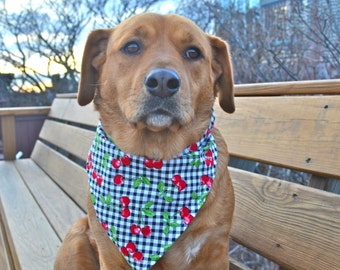 No tie dog bandana black gingham with cherries - goes over collar