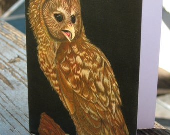 Spotted Owl - Art Greeting Card