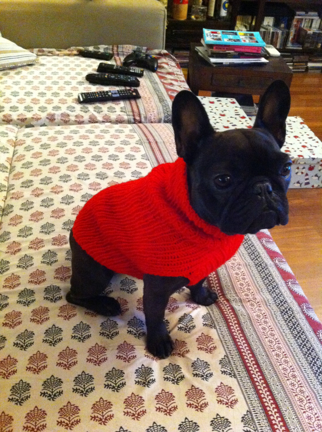 Knitting Patterns For Bulldog Sweaters : French Bulldog Red Knit Sweater for Dogs-Handmade /TRACKING