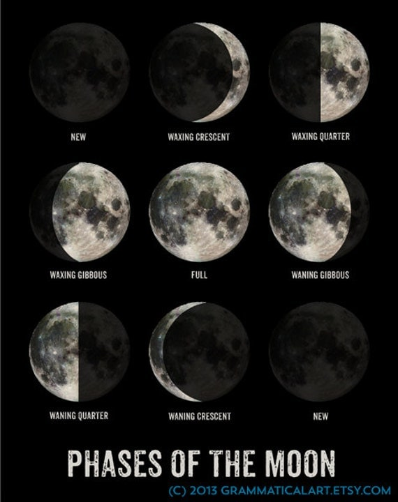Moon Phase Poster Geekery Lunar Phases Science by ...
