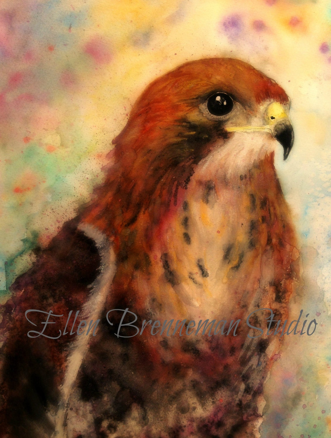 Hawk painting watercolor - photo#11