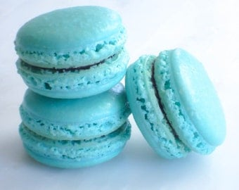 French Macaron Cookies 12 Blueberry Lavender Macaroons Gift Splendid Sweet