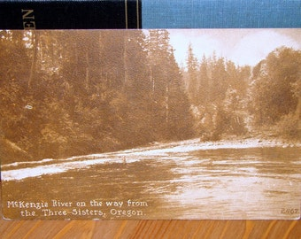 Vintage Postcard, McKenzie River Oregon Early 1900s Paper Ephemera