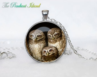 OWL PENDANT   owl necklace White owl Jewelry Necklace for him  Art Gifts for Her for menArt Gifts (P10007)
