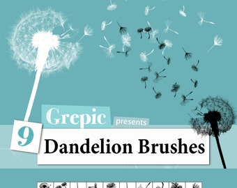 Photoshop brush: 9 Dandelion Photoshop Brushes