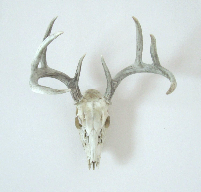 Vintage Deer Antlers Wall Hanging By Luckyjunk On Etsy