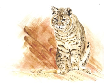 Lynx, Original Watercolor Painting, 8x10, Art & Collectibles earthspalette