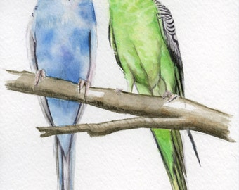 Parakeets, budgie painting, 5x7 print from original watercolor, birds, home decor, bird art, home, living, art & collectibles, earthspalette
