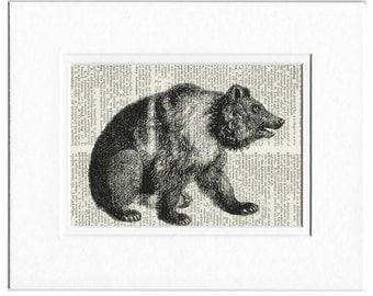 bear I dictionary page print