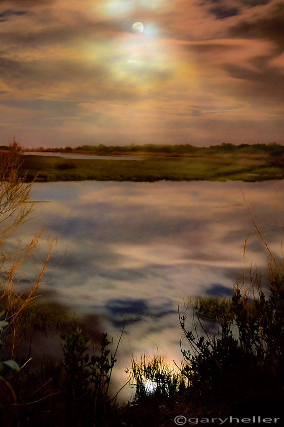 Moonlight over Marsh, Dreamy Landscape, Color Photography, Mystical, Mysterious, Nature, Original Fine Art Print