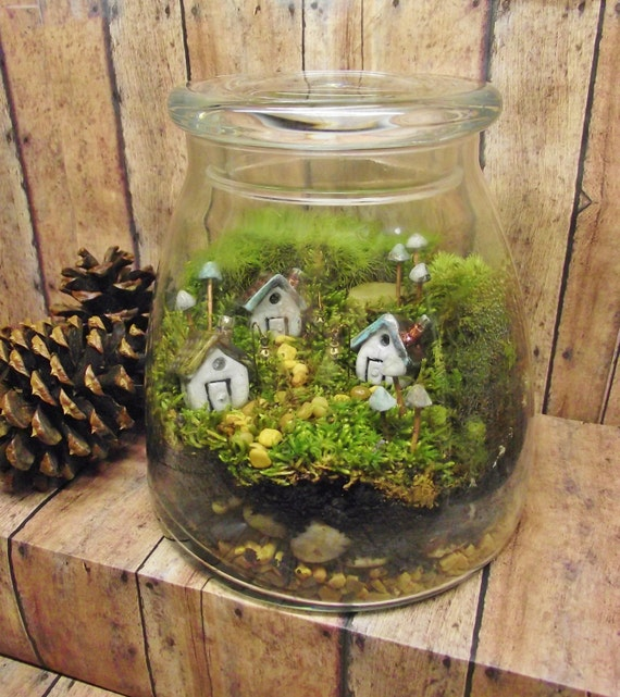 large miniature landscape live moss terrarium fairy. Black Bedroom Furniture Sets. Home Design Ideas