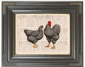 Country French chicken wall decor COUPON SALE Dictionary page art print wall decor Digital art print Music Rooster print Item No. 230