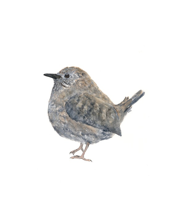 Bird watercolor painting, bird art, watercolor wren, woodland, grey, rustic, earthy, feathers, 8X10