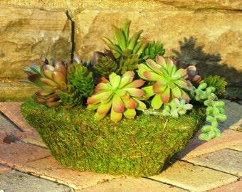 Faux Succulent Centerpiece In Moss Covered Planter, Artificial Cactus Garden Centerpiece