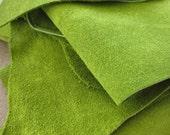Leather scrap - half pound - Leaf Green