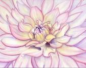watercolor original painting PINK dahlia flower macro SFA