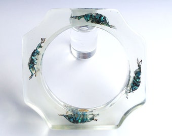 Transparent lucite bracelet with real exotic beetles