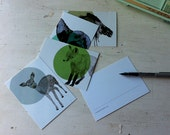 animal postcard set woodland