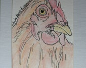 Chicken Watercolor painting, 4x6, matted to 5x7 in white, ChristyLDesigns