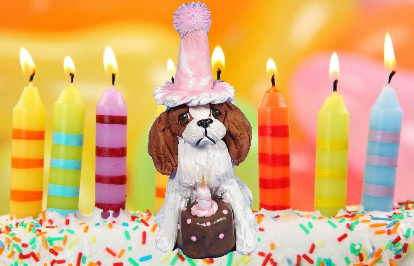 Cocker Spaniel Birthday Cake Ideas and Designs