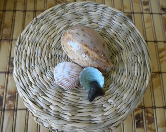 Covered Basket, Seagrass Basket with cover embellished with seashells, Storage Basket, Cesta, Corbeille