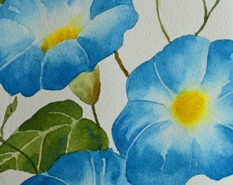Morning Glory Flowers-Fine Art-Watercolor Painting