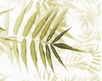 CLEARANCE Spring, Nature Photography, Botanical Leaves Print, Home Decor, Olive Green, Earth Tones, Pale - 8x10 inch Print - In Dreams