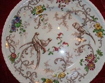Rare Royal Cauldon Plate,Est 1774,8 of 40,Birds,Made in England