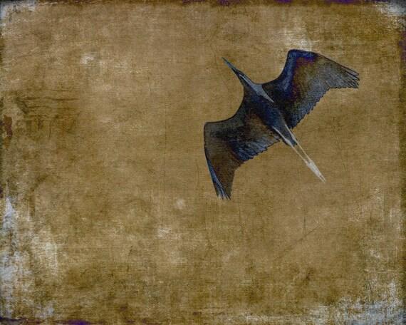 50% OFF SALE: In Flight (Brown) Digital Art Print