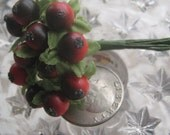 12 Millinery Light Red And Dark Berries Berry Fruit From Austria
