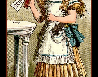 Alice in Wonderland Drink Me Refrigerator Magnet