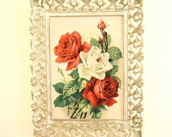 Vintage Red and White Roses Framed Print