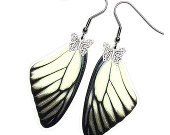 Real Butterfly Wing Earrings (Prioneris Forewing - E015)