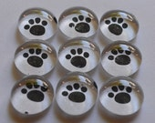 Glass Marble Magnets - Paw Prints