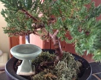 Miniature Bird Bath for Terrarium,Doll House,Fairy Garden,Bonsi