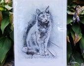 "Hazel Cat Print -  8""x10"""