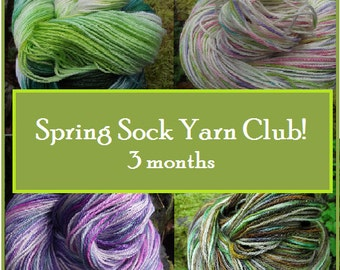 Spring Sock Yarn Club Membership, Handpainted sock yarn 3 months free shipping, March April May