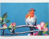 art  print of bird-robin red breast- blue tit - Big paper print - animal bird prints - PRINT ART-fine art paper  size A3