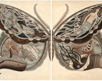 Sea Wings 8x10