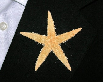 Beach Wedding Starfish Boutonniere, Real Phillipine Starfish