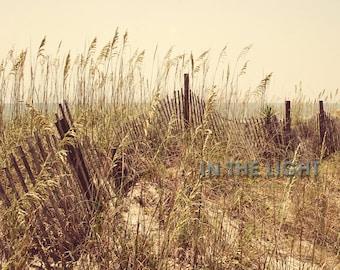 Sand Dunes in Myrtle Beach - Fine Art Photography