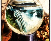 Snow Globe, Glass Ball,Niagara Falls Canada